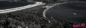 Palm Beach Escorts